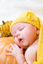Baby Sleeping On Pumpkin