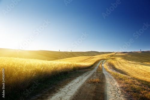 Foto auf Gartenposter Landschappen ground road on field in Tuscany, italy