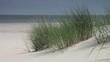 Strand - 001 - Duenengras