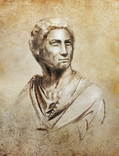 Brutus Portrait Illustration, ...