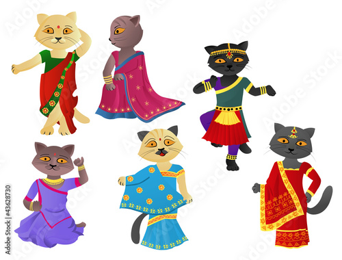 Printed kitchen splashbacks Cats Cats in a sari