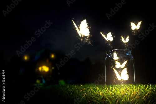 Fotografie, Tablou  Butterflies