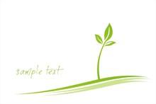 Leaves , Plant , Green Eco Fri...