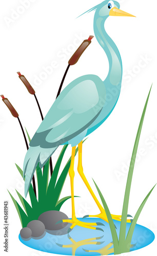 cute heron cartoon Fototapeta