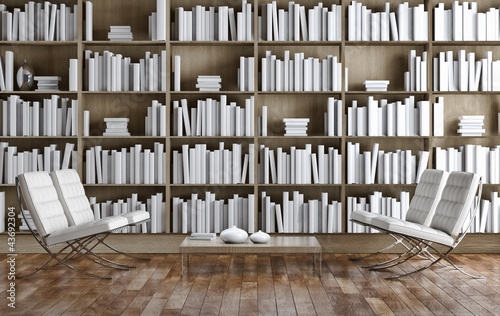 La pose en embrasure Bibliotheque Living room