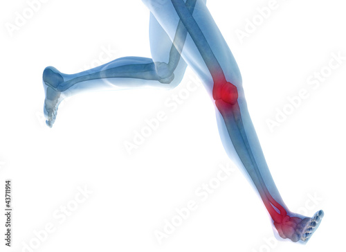 High resolution 3D human for anatomy, medicine and health Wallpaper Mural