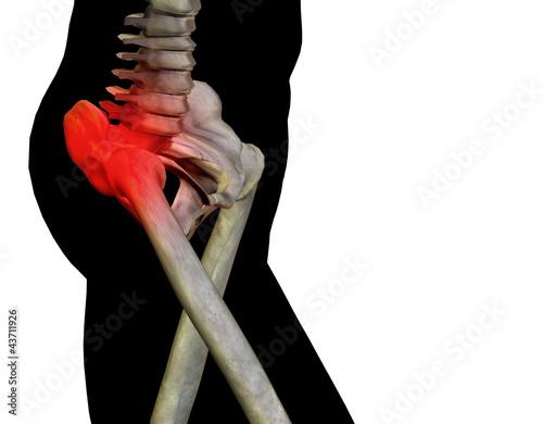 Photo High resolution 3D human for anatomy, medicine and health