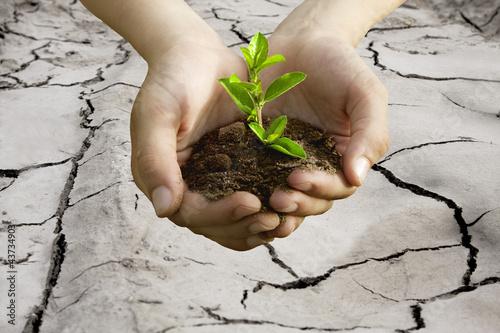 Fotografie, Obraz  desarrollo sostenible, concepto