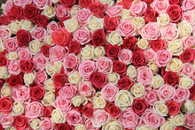 White And Pink Roses In Arrang...