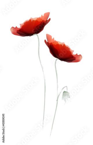 Tuinposter Abstract bloemen Red Poppy