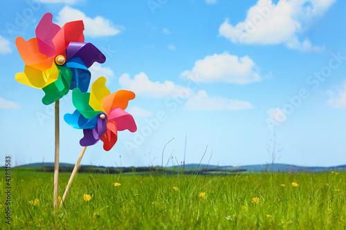Fotografia, Obraz  Pinwheels on Meadow