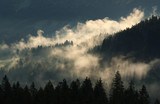 Fototapeta Fototapeta z niebem - Clouds & forrest