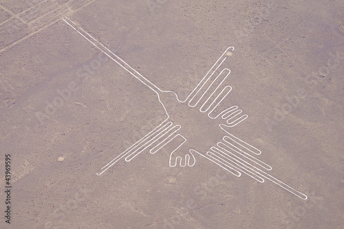 Poster South America Country Linien von Nasca