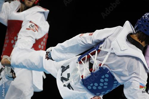 Cuadros en Lienzo taekwondo