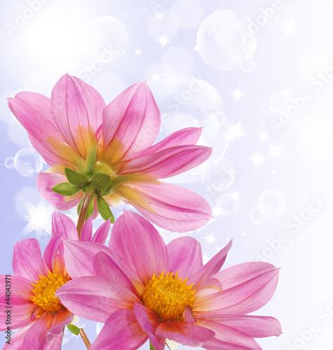 Fototapeta Decorative beautiful flower design obraz na płótnie