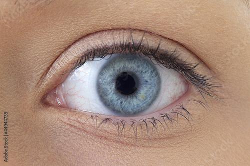 Recess Fitting Iris Oeil gauche - Femme
