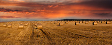 Hay Bales And Twilight Sky - Panoramic View