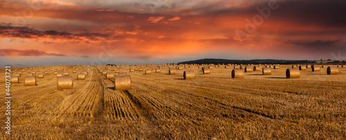 Photo Hay bales and twilight sky - panoramic view