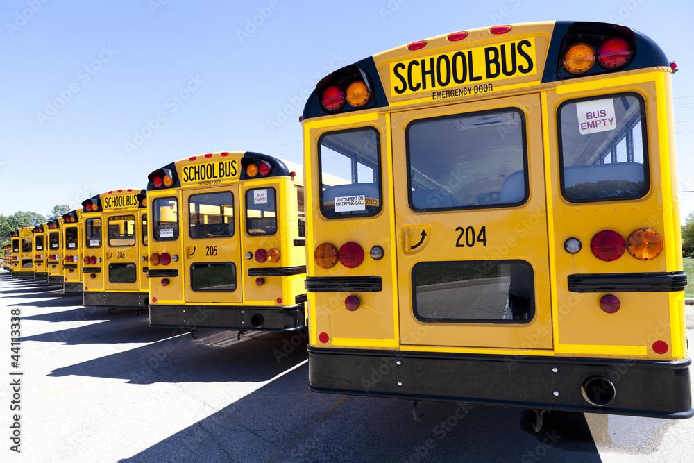 fotografia yellow school bus em europosters pt