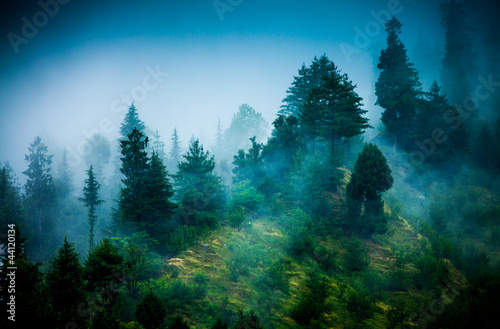 Fototapeta góry gory-we-mgle
