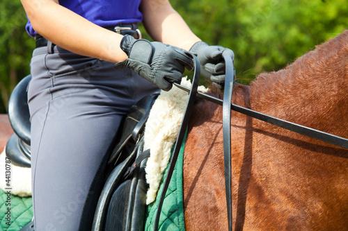 Poster de jardin Equitation Dressage horse