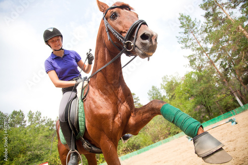 Poster Equitation horsewoman
