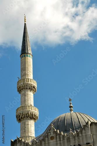 Fotografie, Obraz  Mosque and minaret