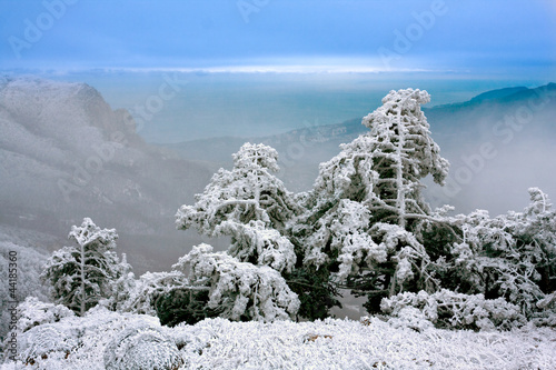 Fotografia, Obraz  winter scene in mountains