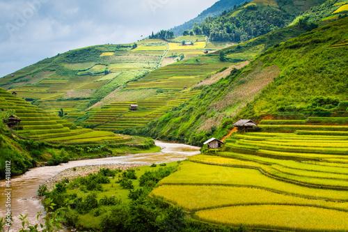 Foto auf Gartenposter Reisfelder Rice Terraces