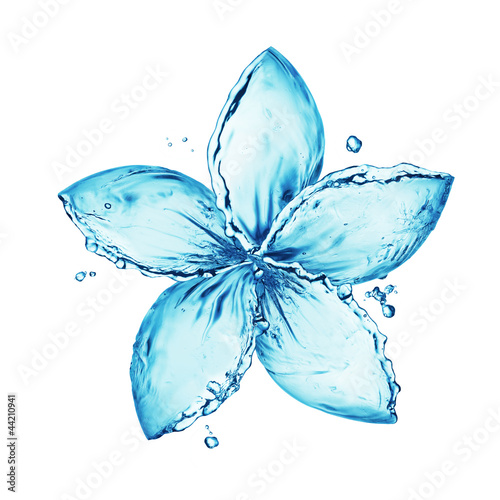 Foto auf Gartenposter Wasser flower made of water splash