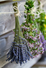 Herbs Drying On The Wooden Bar...