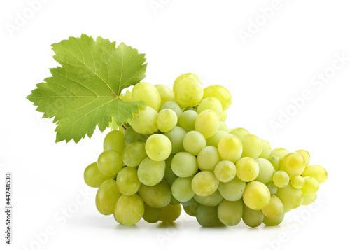 Fotografia, Obraz  white grapes on white