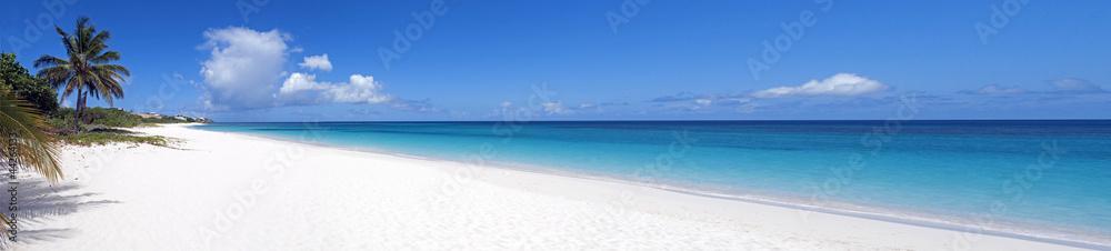 Fototapeta Caribbean beach.