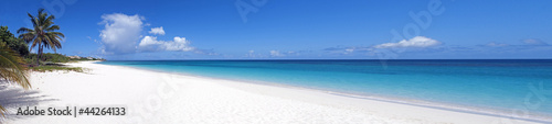 Caribbean beach. Canvas Print
