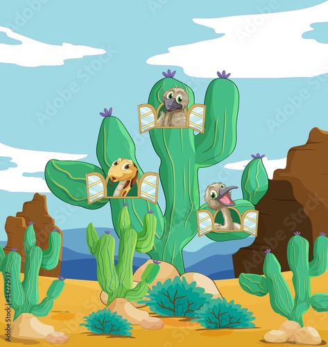 Poster Oiseaux, Abeilles various animals and cactus