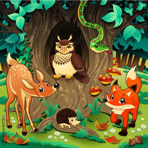 zwierzeta-w-lesie-ilustracji-wektorowych