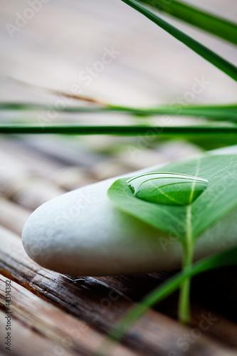Plissee mit Motiv - Zen stones
