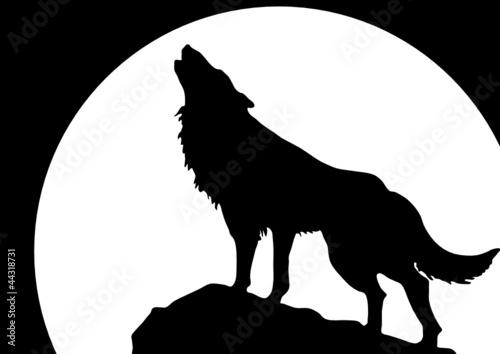 wyjacy-wilk-przed-ksiezycem
