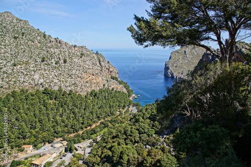 Foto op Plexiglas Cyprus Küste auf Mallorca