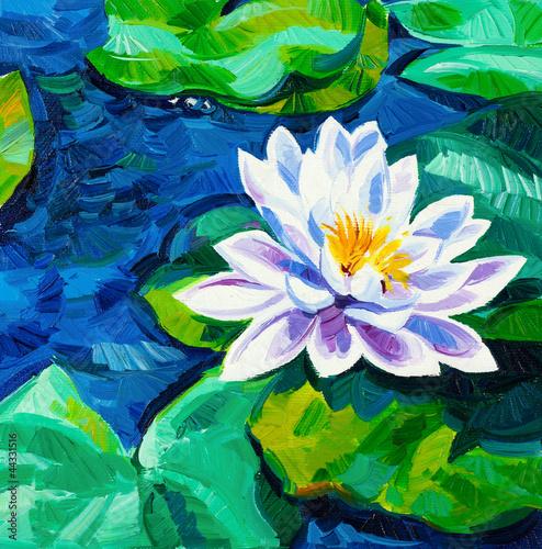 lilia-wodna
