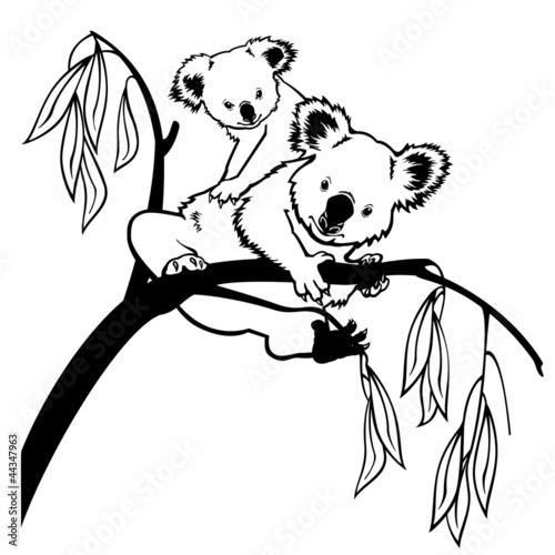 koala-z-dzieckiem-czarno-bialym