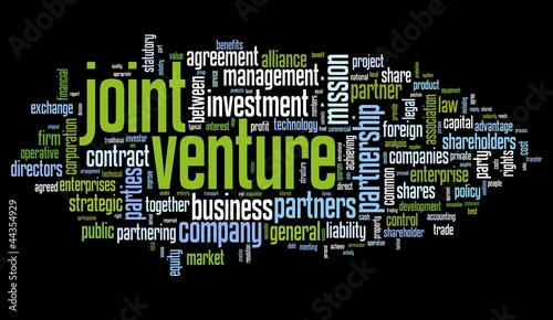 joint ventures business strategies for accountants