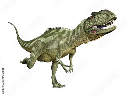 Photo  Dinosaurier Yangchuanosaurus
