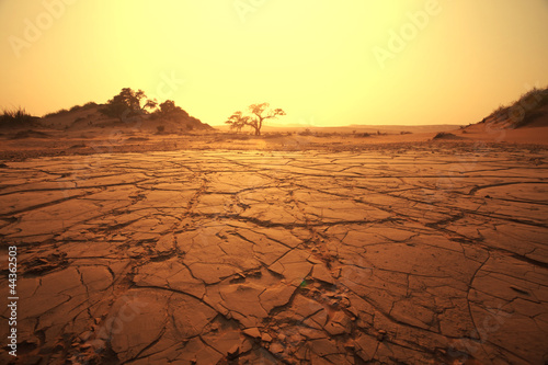 Aluminium Prints Drought Namib