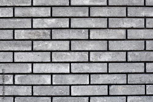 Fototapeta premium gray wall