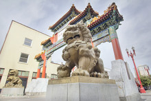 Chinese Foo Dogs Pair At Portl...