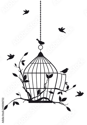 Poster Birds in cages free birds with open birdcage, vector