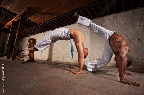 Foto-Stoff bedruckt - Two Capoeria Performers Fighting (von Scott Griessel)