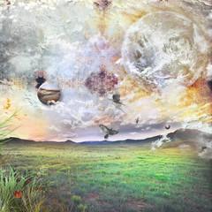 Obraz na płótnie Canvas Pasture land