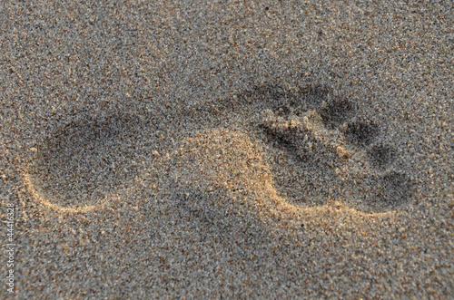 Foto-Rollo - Fußabdruck